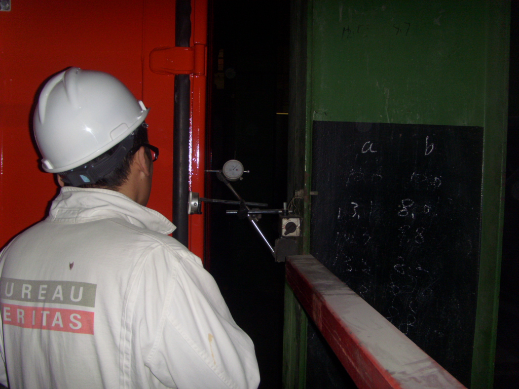 Container inspection service